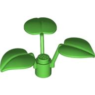ElementNo 4107432 - Br-Green